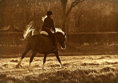 horse riding 400x280 - 3 Main Reasons Why Horse Riding is a Great Means of Recreation