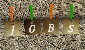 job search 300x175 - Which Hobbies Are the Best Ones for Your CV?